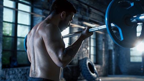 bodybuilding-virtualfitness